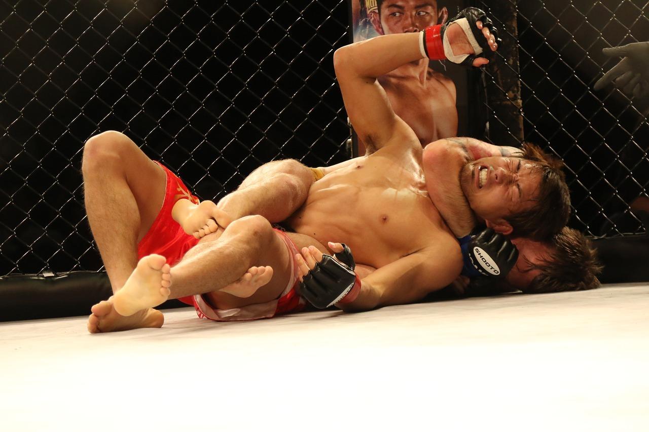mma-mixed-martial-arts